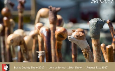Things to do at the Bucks County Show – 5 days to go : Visit our Rural demonstrations, farrier, hedge laying, walking stick making,  in the countryside area.